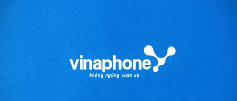 Các đầu số mạng Vina( Vinaphone)