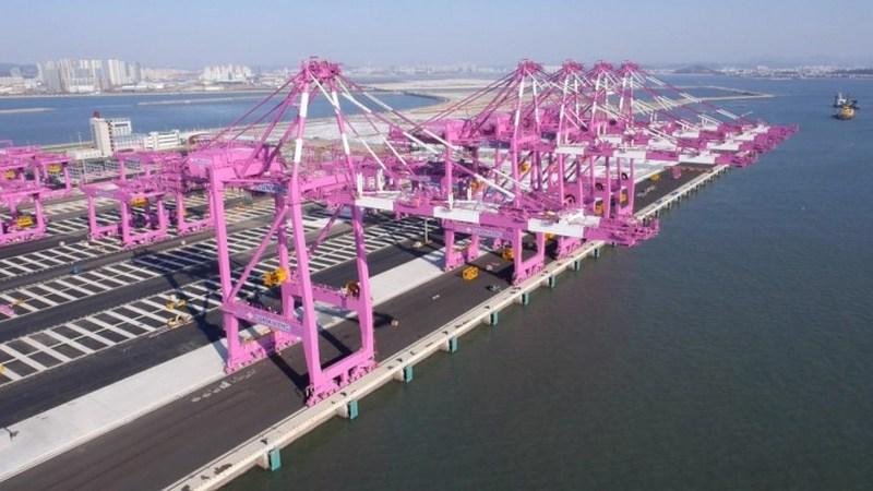 Các hãng tàu lớn để vận chuyển hàng hóa đường biển từ Hàn Quốc về Việt Nam.